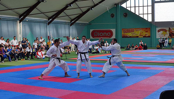 karate_hercegovina-open-6