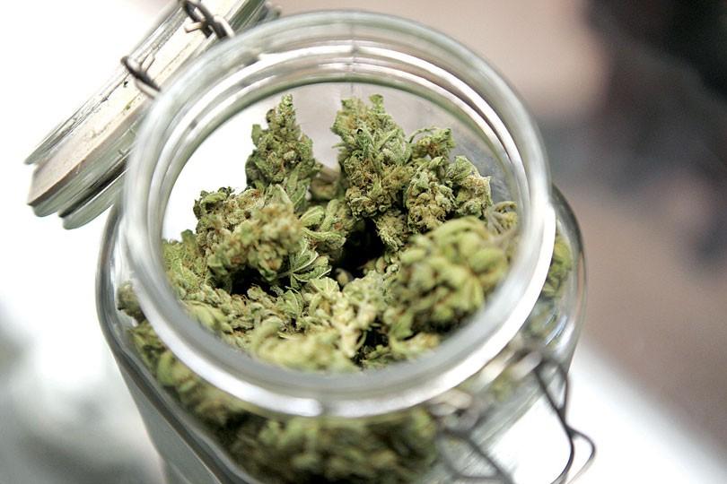 droga_cannabis