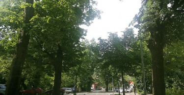 ulica_kraljice_katarine