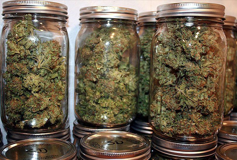 marihuana-tegle